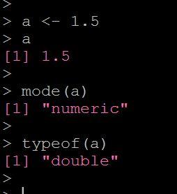 Rで数値のデータ型を調べる
