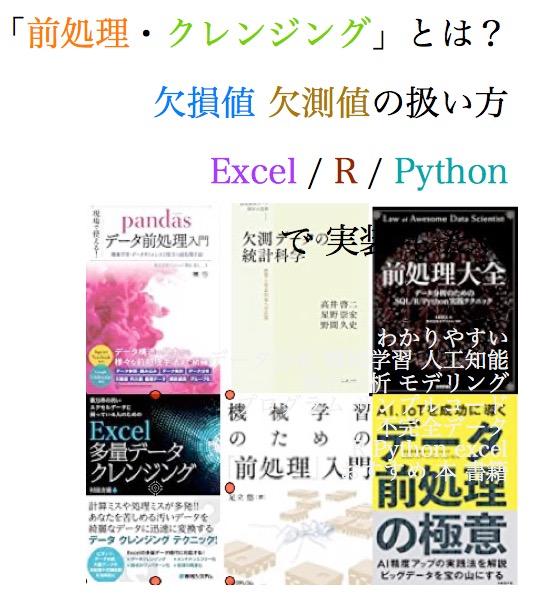 前処理 クレンジング やり方 方法 不完全データ 欠損値 欠測値 データ分析 機械学習 人工知能 エクセル excel python r sas おすすめ 本 書籍